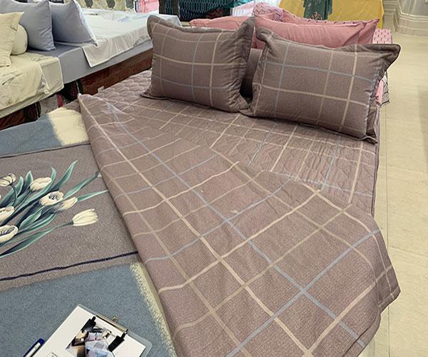 Bộ Chăn ga gối Sông Hồng Basic vải Cotton BC20003