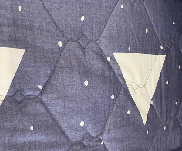 Bộ Chăn ga gối Sông Hồng Basic vải Cotton BC20001